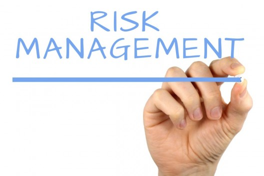 Risk Management and Insurance we do your assignment
