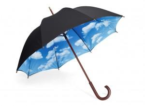 Term Plan Umbrella