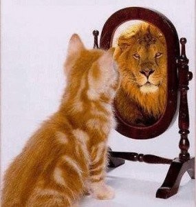 Kitten today, Lion Tomorrow. Same goes for your money, when put in a Universal Life Plan