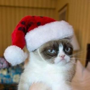 grumpy-cat-santa-hat