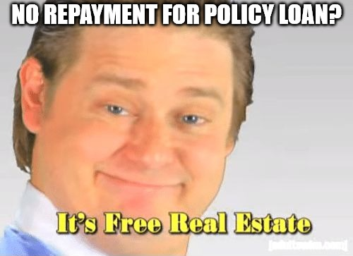 policy loan